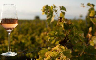 Sip Your Way Through Idaho Wine and Cider Month in Garden City